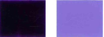 Bulawan-violet-23-Kolor