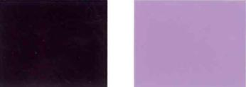 Bulawan-violet-29-Kolor